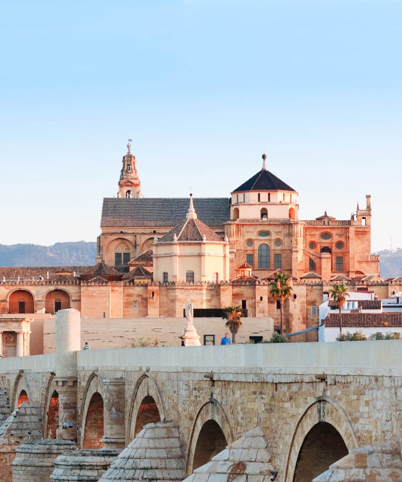 Seville to Cordoba by train