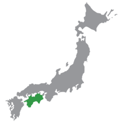 Shikoku Rail Pass