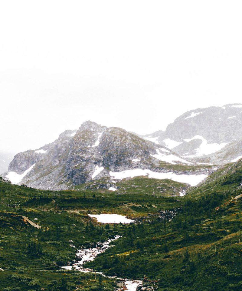 Myrdal to Flåm by train